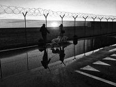 Quelle giornate piovose.. (roccomal) Tags: mobilepic huawei bw bn biancoenero blackandwhite snapseed strada persone cani riflesso pozzanghere street people dogs reflection puddles asfalto recinzione asphalt enclosure