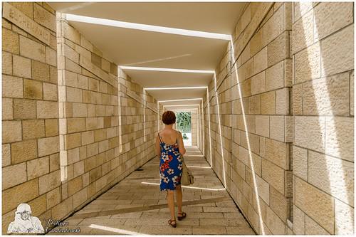 0068 holocaust memorial miami
