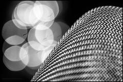 Another fine mesh (G. Postlethwaite esq.) Tags: bw canon40d canonefs60mmmacro dof macro blackandwhite bokeh closeup depthoffield monochrome photoborder primelens selectivefocus