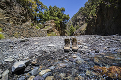 Auszeit (marko-DD) Tags: wandern hike fluss bach river stein stone felsen rock pinie landscape landschaft himmel kanaren insel island