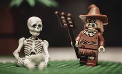 Skeleton and Scarecrow (N.the.Kudzu) Tags: tabletop lego scarecrow miniature skeleton canondslr lensbabytwist60 lightroom