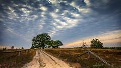Countryside (fotobagaluten.de) Tags: heath heide landschaft landscape countryside lowersaxony niederhaverbeck lüneburgerheide deutschland gemany sky himmel perspective perspektive