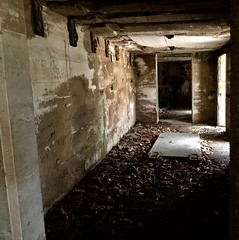 Open the door, get on the floor Everybody walk the dinosaur (krossbow) Tags: maryland prince georges county fort washington park national service npsgov fowa battery humphreys endicott concrete unoccupied uninhabited empty abandoned vacant derelict ruins mold iphone 8