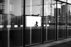 Hands-free (pascalcolin1) Tags: paris13 bnf homme man vélo bike reflets reflection miroir mirrors vitres windows lumière light mains hands handsfree photoderue streetview urbanarte noiretblanc blackandwhite photopascalcolin 50mm canon50mm canon