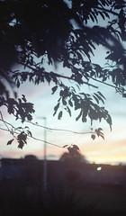 (Mrs.Black&White) Tags: zenitb handprocessed helios44258mmf2 kodakportra160 35mmfilm tetenalc41