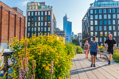 """""""Highline Park Early Morning"""" (So Fluid) Tags: landscape landscapephotography newyorkcity manhattan park highlinepark nature cityscape morning sofluid canon sigma eastcoast east les buildings structure skyscrappers"""