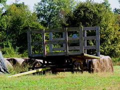 Amish Hay Wagon (~~Chuck's~~Photos~~) Tags: chucksphotos canonsx60 amish hay wagon exploringkentucky backroads autumn oldfarmequipment trees grass outdoors kentuckyphotos ourworldinphotosgroup earthwindandfiregroup photosthruyourlensgroup solidarityagainstcancergroup