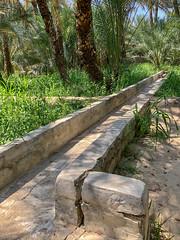 Wahat al_Ayn oasis (mpoutside) Tags: dubai unesco wāḥaṫal'ayn oasis alain abudhabiemirate unitedarabemirates ae