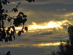 Morning Sunlight. (dccradio) Tags: lumberton nc northcarolina robesoncounty outdoor outdoors outside nature natural sky cloud clouds cloudformation layers scenic beauty godshandiwork godscreation beautiful pretty autumn fall saturday morning goodmorning october tree trees branch branches treebranches treebranch treelimb treelimbs canon powershot a3400is silhouette