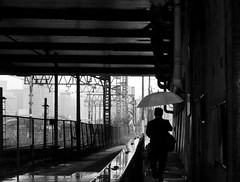 commute... (明遊快) Tags: monochrome street railway city walking rain wet road japanese urban station man