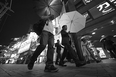 FORECAST (ajpscs) Tags: ©ajpscs 2018 ajpscs japan nippon 日本 japanese 東京 tokyo city people ニコン nikon d750 tokyostreetphotography streetphotography street seasonchange summer natsu なつ 夏 shitamachi night nightshot tokyonight nightphotography citylights tokyoinsomnia nightview dayfadesandnightcomesalive alley strangers urbannight attheendoftheday urban othersideoftokyo walksoflife urbanalley tokyoscene streetoftokyo sidewalk wetnight rainynight rain ame 雨 雨の日 whenitrains 傘 anotherrain badweather whentheraincomes cityrain tokyorain noplaceforthesun umbrella whenitrainintokyo arainydayintokyo nosuntoday forecast