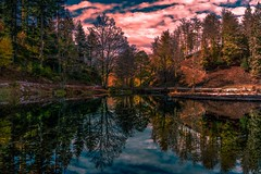 Nonnenmattweiher (Toledo 22) Tags: natur landschaft nature landscape herbst autumn spiegelung badenwürttemberg gewässer fichten bäume wald nonnenmattweier blackforest schwarzwald weiher see
