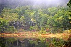 Early Autumn (tez-guitar) Tags: water reflection pond autumn highland shinshu nagano pentax pentaxart