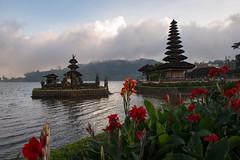 Bali-76 (tommasodonelli) Tags: