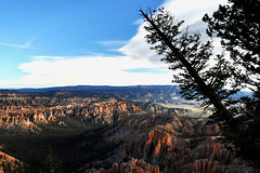 Bryce Canyon - Falling Tree (Drriss & Marrionn) Tags: travel utah usa landscape landscapes mountains desert rock rockformation ridge cliff cliffs mountainside canyon brycecanyon red sand mountain snow nature trees forest mountainrange rocks brycecanyonnationalpark tree sky bluesky