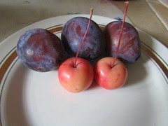 These are apples, and they are smaller than plums. (VERUSHKA4) Tags: apple plum fruit kitchen canon russia september autumn moscow nature purple red europe vue view composition set three two duo deux indoor season small size tasty