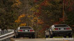 IMG_7558_result (ferrariartist) Tags: delorean gullwing automobiles automotive automobile 80s stainless car sportscar irish fall autumn ferrariartist