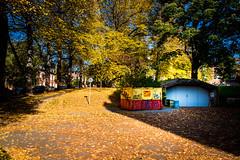 Autumn colors (Maria Eklind) Tags: höst leaf sweden outdoor universitetsbiblioteket light trees skåne tree autumncolors ljus city universitylibrary autumn colorful lund library skånelän sverige se
