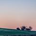 Lake Tyrrell Sunset Hues-7
