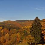 Güldener Herbst thumbnail