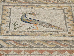 2,000 year old Roman mosaic tile floors (VJ Photos) Tags: hardison spain seville italica