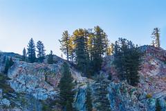 BareIslandLakeTrees1Sept2-18 (divindk) Tags: bareislandlake california maderacounty sierranationalforest backpacking camping granite lake quiet reflection serene sunlight sunrise
