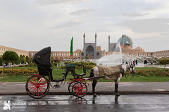 Esfahan (welcometoiran) Tags: esfahan iran iranian middleeast neareast persia persian ir welcome welcometoiran irantravelagency irantours horse isfahan