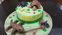 Critters cake (Victorious_Sponge) Tags: critters tortoise lizard spider animal cake birthday boys
