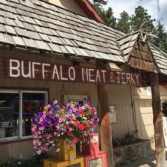 Flathead Lake (Thundercheese) Tags: montana flathead lake buffalo meat