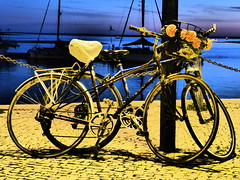 Parked (cyclingshepherd) Tags: 2018 cyclingshepherd november novembro europe europa portugal algarve faro olhao olhão bike bikes bicicleta bicicletas bicicletta biciclettas rad fahrrad fiets parked velo vélo dusk waterfront rack bag mixte chain basket flowers blue yellow carrierbag plasticbag wheels dawes 531 reynolds bullhorn