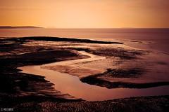 Snake (Melanie Gregory) Tags: nikon beacheslandscapes photographers uk seaside clevedon somerset sand sunset beach