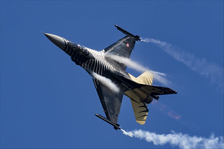General Dynamics F-16C Fighting Falcon - 09