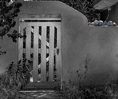 Gate (msuner48) Tags: d750 acr5 cs4 gate adobestructure stones trees plants bw nikcollection topazlabs chimayonewmexico nikonafs24120mmf4ged