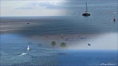 EL FINAL DEL VERANO IV (Angelines3) Tags: cielo mar nubes azul barcos palmeras bahia benidorm comunidadvalenciana verano collage playa