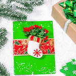 Merry Christmas card and gift box handmade on winter new year background. Preparing for the holidays thumbnail
