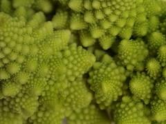 Broccolo romanesco (ryorii) Tags: bfood macromondays pattern fractal frattali frattale infiorescenze fleur fiori flowers edible commestibile vegetale verdura vegetables macro verde broccoli cibo broccoloromanesco