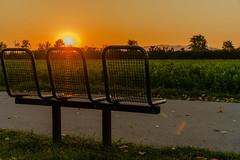 Sunset in Vösendorf (a7m2) Tags: sunset vösendorf loweraustria radweg natur travel touristen wandern radfahren joggen bank