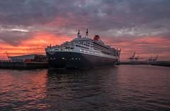 Queen Mary 2 (Phil Bandow) Tags: qm2 queen mary 2 cunard hamburg elbe steinwerder cruise center germany deutschland sunset sonnenuntergang sonnenaufgang sunrise