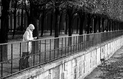 Hiver. [Winter] (Canad Adry) Tags: paris tuileries sigma apo mf 50200mm f3545 noir et blanc monochrome black white bw park woman people perspective street rue nature city ville tree vintage old classic manual legacy rare adapted japanese lens alone seul
