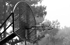 basket ball (Artee62) Tags: canon eos 7d cruise ventura vigo holiday summer