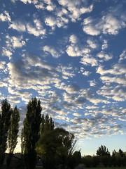 Sunrise with Altocumulus 2 (Chuckcars) Tags: colorado montrose usa altocumulus sunrise clouds autumn sky blue weather