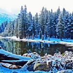Spring Snow, Yosemite High Country 5-15 thumbnail