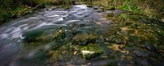 Wasser im Fluss (Jensens PhotoGraphy) Tags: deutschland germany natur nature landschaft landscape langzeitbelichtung wasser water fluss badenwürttemberg bach