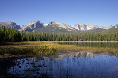 Bierstadt Lake (Jeff Mitton) Tags: bierstadtlake rockymountainnationalpark mountain glacier continentaldivide lake forest conifers grass reflection colorado wilderness rockymountains landscape scenic earthnaturelife wondersofnature