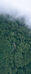 眠月|Alishan (里卡豆) Tags: 阿里山鄉 嘉義縣 臺灣 tw 臺灣省 台灣 taiwan aerial photography aerialphotography dji 大疆 空拍機 mavic2 drone mavic2zoom