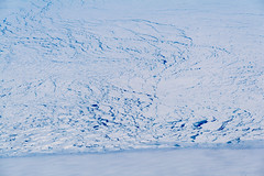Pack ice of Antartica | antarktisches Packeis (Astro_Alex) Tags: antarctica earthobs iceberg seaice tweeted