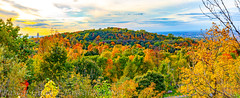 Mount Royal Fall 2018 (Pascal Guay) Tags: mount royal montreal fall autumn automne montréal mont montroyal colours nature forest outdoor university clouds sunset trees panorama
