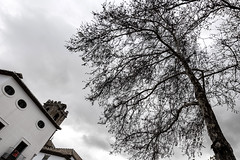 Invierno (marianobs) Tags: contrate perspectiva nikon d850 1424mm