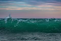Bluefish in the Waves - Martha's Vineyard (John Piekos) Tags: marthasvineyard nikon bait d750 2470mm feeding bluefish fishing fish surfcasters surf ocean edgartown southbeach marthasvineyardstripedbassandbluefishderby waves