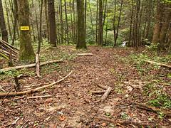 Private property (MarksPhotoTravels) Tags: greenvillecounty privatepropety southcarolina trail